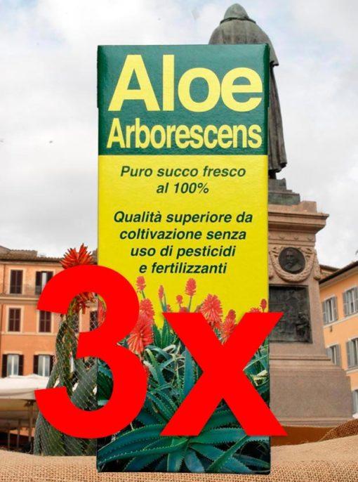 Succo di puro Aloe Arborescens